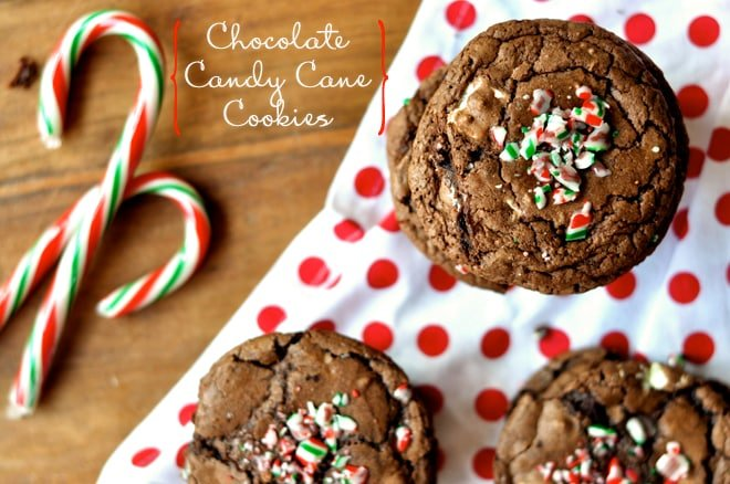 Chocolate Candy Cane Cookies Foodess