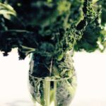 How To Bring Wilted Kale Back To Life