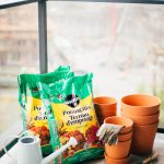 Planning a Vegetable Container Garden + a Gardening Giveaway!